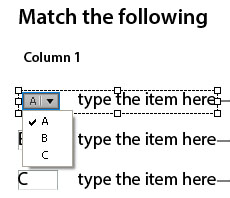 Match the following question in Adobe Captivate